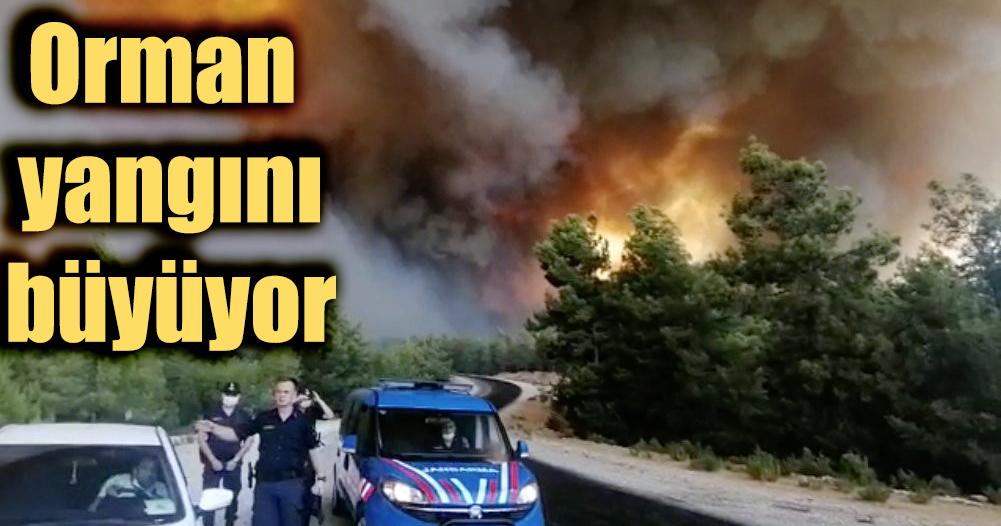 Manavgat'daki orman yangını sebebiyle gökyüzü dumanla kaplandı